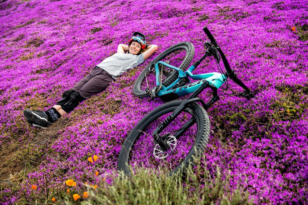 Vélo tout terrain dans les fleurs
