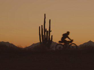 Silueta de un ciclista al atardecer junto a cactus con montañas de fondo.