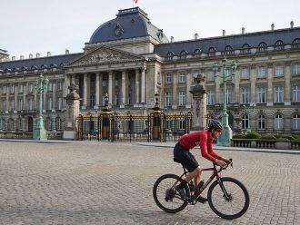Het Koninklijk Paleis in Brussel