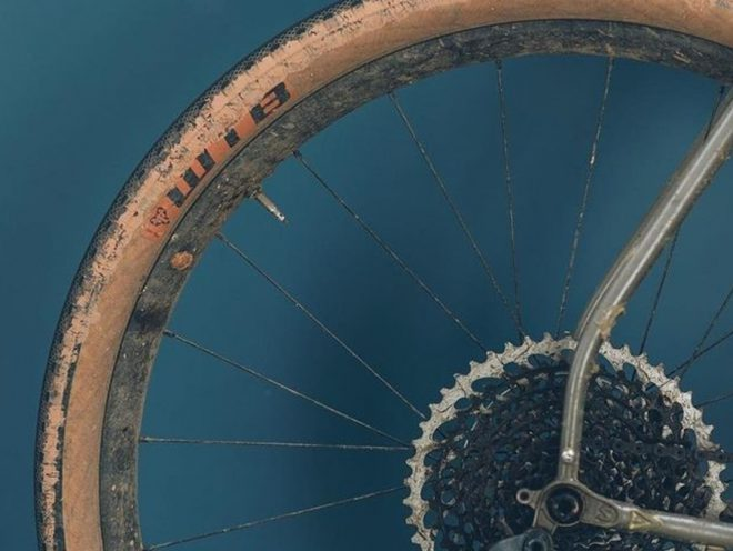 A photo of a rear mountain bike wheel and cassette against a blue wall.