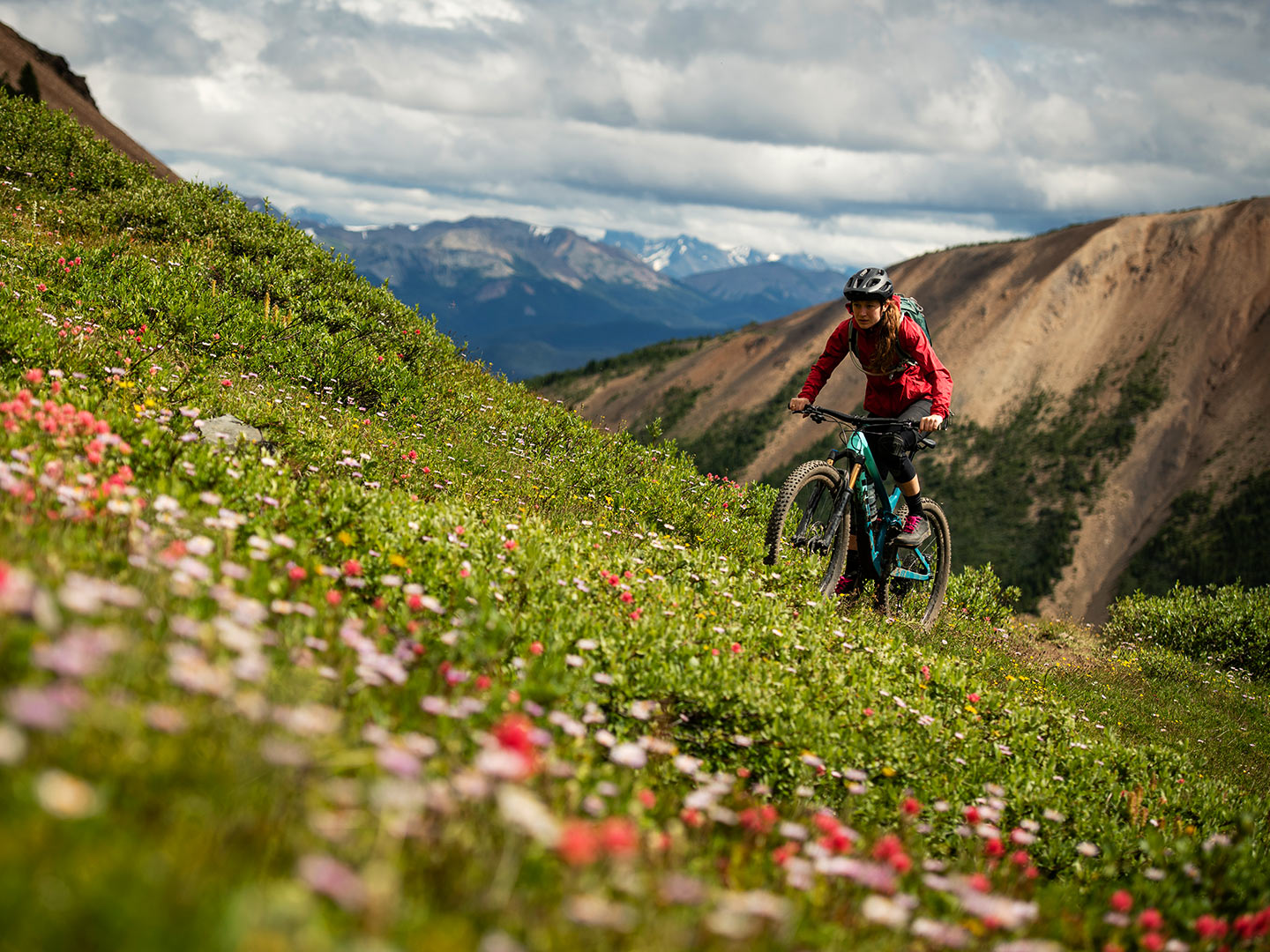 Rider climbs up mountain trail with wildflowers